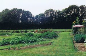Kitchen Garden circa 1998 - the first design